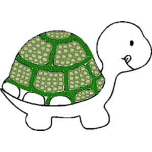 turtle :DDD